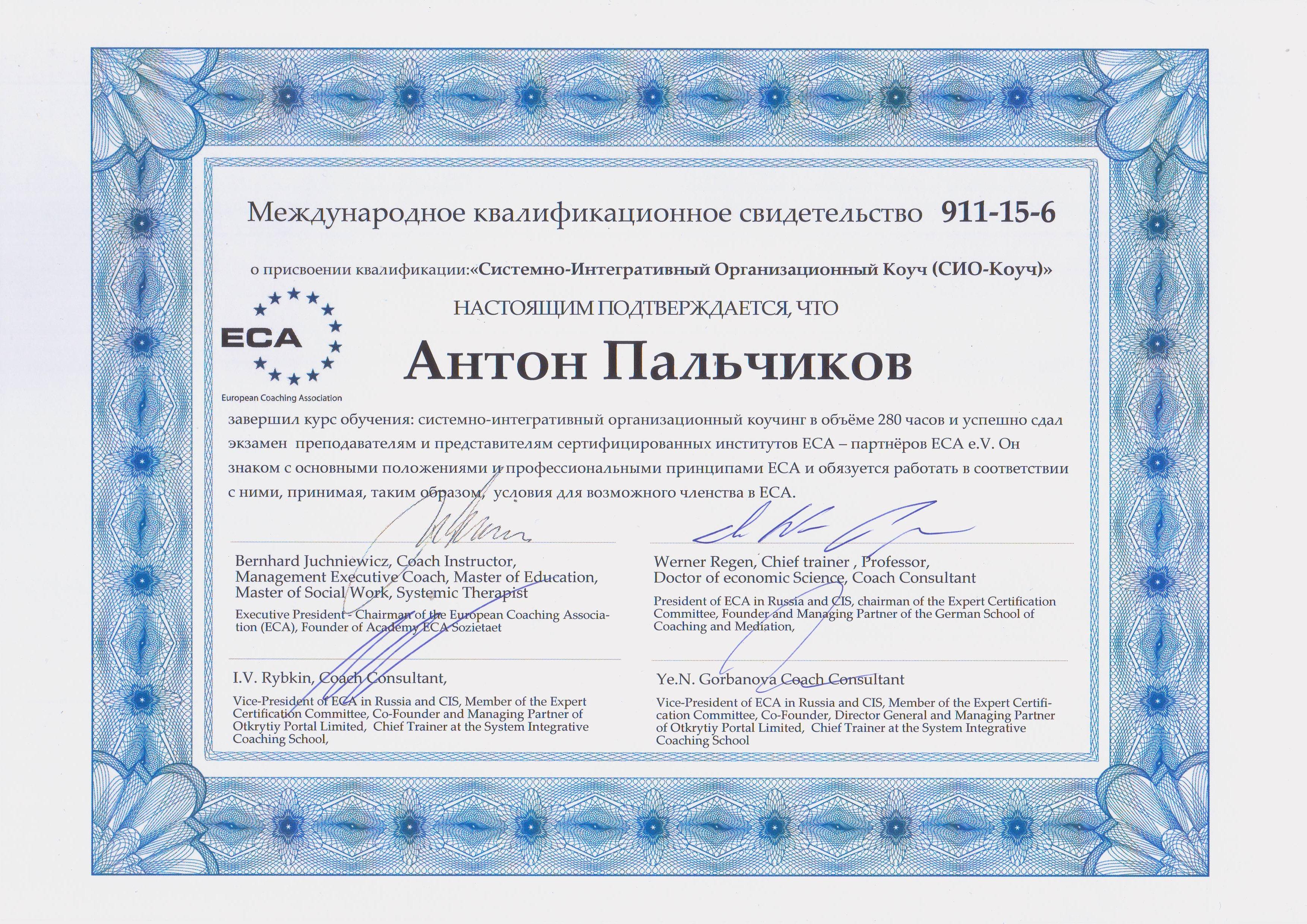 _Palchikov_SICOrg_rus