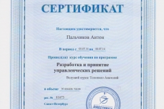 _Palchikov_Directorica