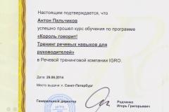 _Palchikov_IGRO