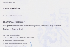 _Palchikov_OHSAS_Audit