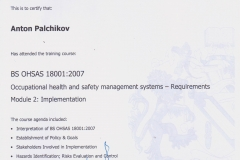 _Palchikov_OHSAS_Implentation