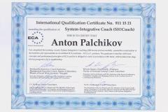 _Palchikov_SIC_eng