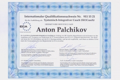 _Palchikov_SIC_ger