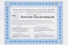 _Palchikov_SIC_rus